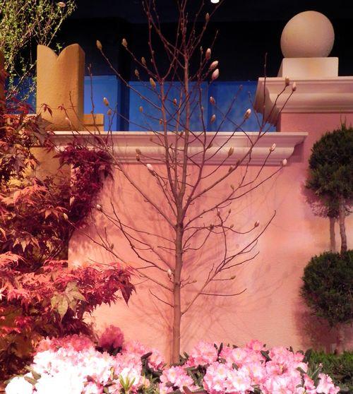 Macy's Flower Show 055rev