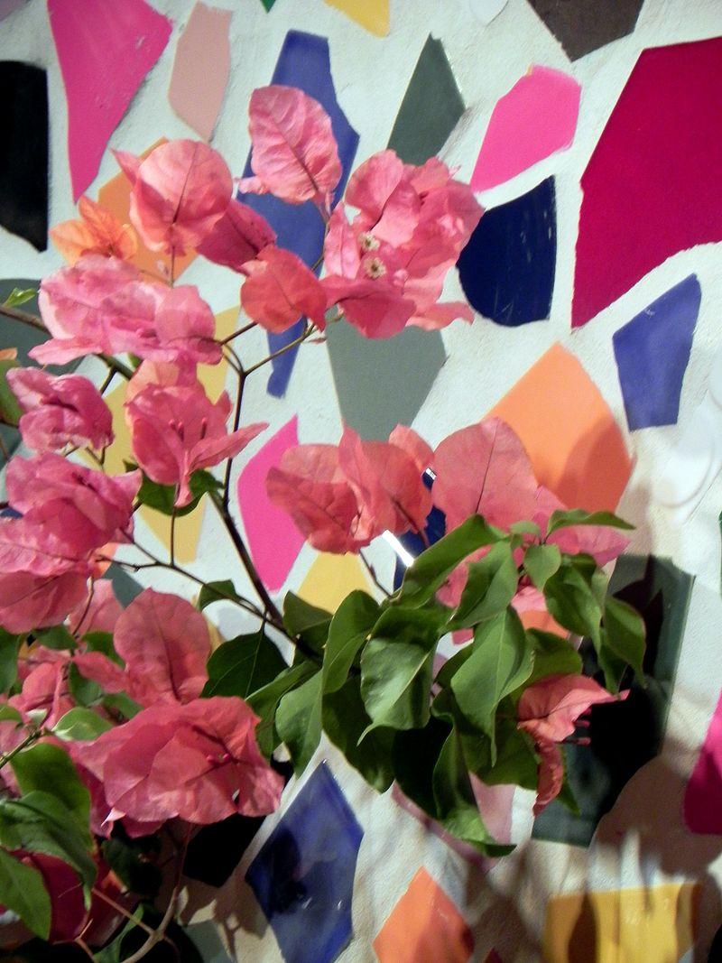 Macy's Flower Show 051rev